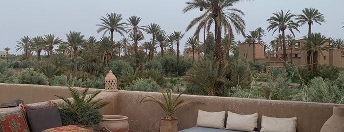 Jardin De skoura is one of Morocco 🇲🇦.