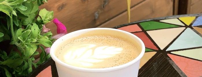 Surf Coffee is one of Posti che sono piaciuti a Jano.