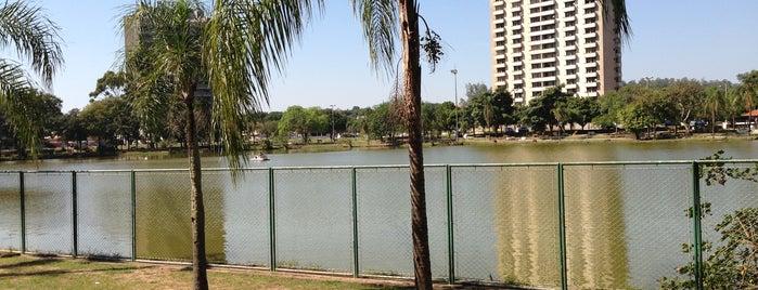 Lago Municipal de Araras is one of Locais curtidos por Ivone.
