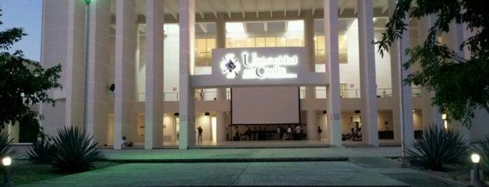 Universidad del Caribe is one of สถานที่ที่ Gabriel ถูกใจ.