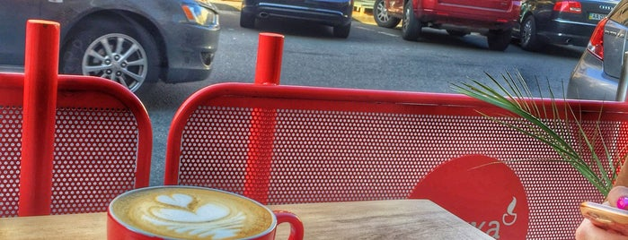 fresh-roasted-coffee-kyiv