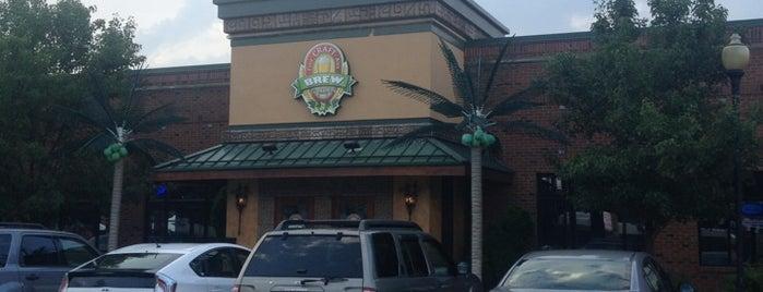 Brew Garden is one of bars.