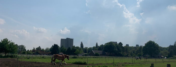 Wageningen is one of Sitios Internacionales.