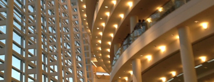 Adrienne Arsht Center for the Performing Arts is one of Miami's Best Live Music Venues.