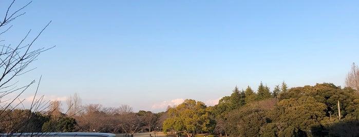 立沢公園 is one of Minha lista.