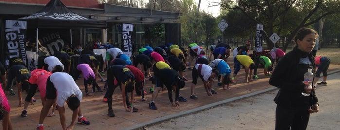 Adidas Running is one of Locais salvos de Alice.