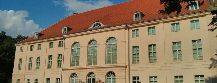 Schloss Schönhausen is one of Schlösser in Brandenburg.