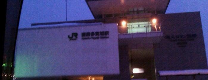 Kokufu-Tagajō Station is one of JR 미나미토호쿠지방역 (JR 南東北地方の駅).
