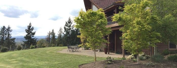 Vidon Vineyard is one of Portland wine country.