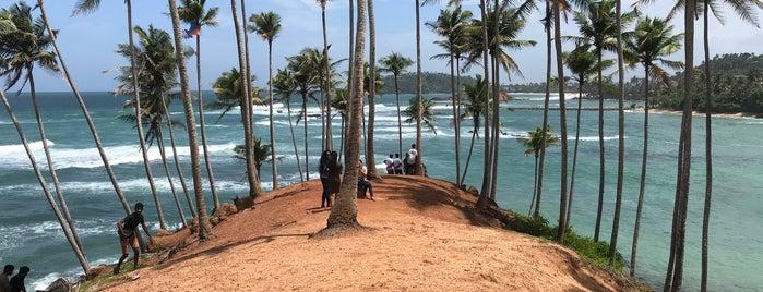 Mirissa Coconut Tree Hill is one of Sri Lanka.