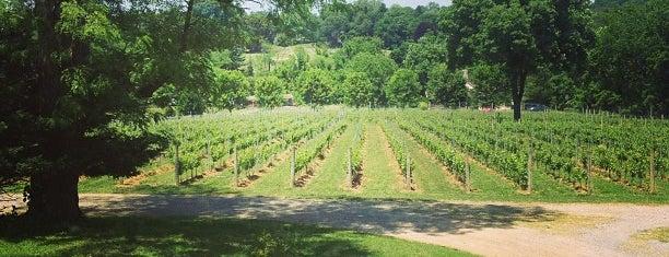 Galer Estate Vineyard & Winery is one of Lugares favoritos de Terri.