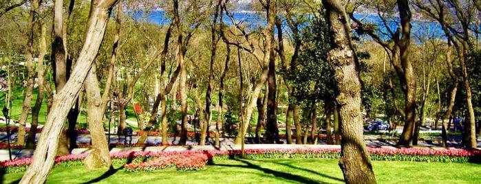 Emirgan Korusu Yürüyüş Parkuru is one of Oğuz Kağan'ın Beğendiği Mekanlar.