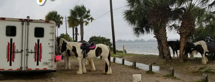 C Ponies Beach Horses is one of Locais curtidos por Carlo.