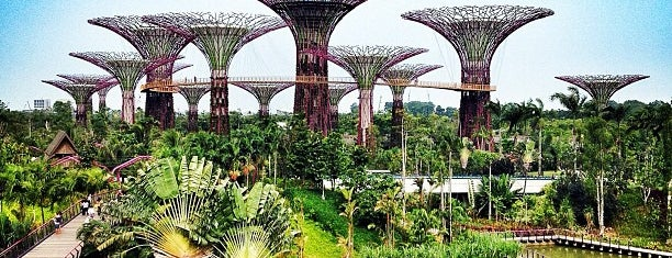 Gardens by the Bay is one of Guide to Singapore's best spots.