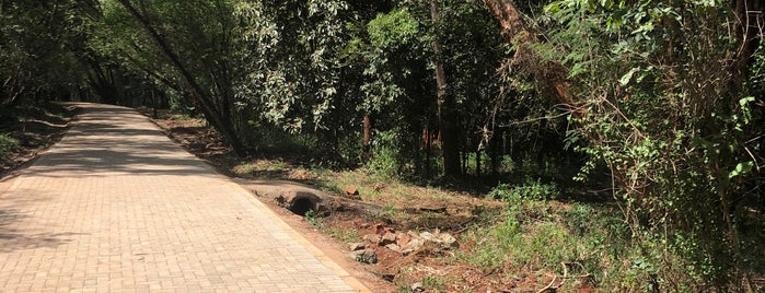 Nairobi Arboretum Park is one of Nairobi.