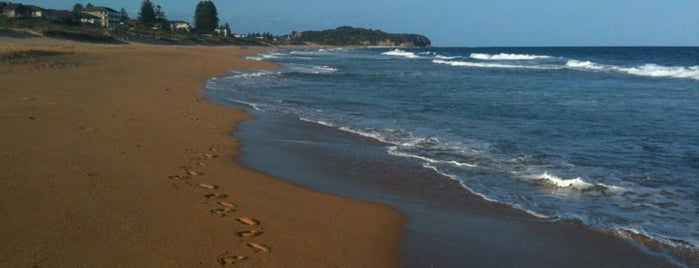 Narrabeen Beach is one of Maryさんのお気に入りスポット.