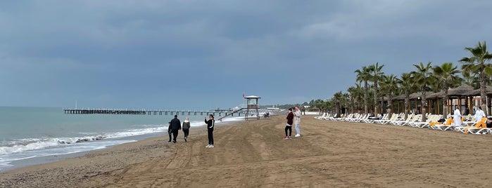 Family Beach is one of Orte, die Yunus gefallen.