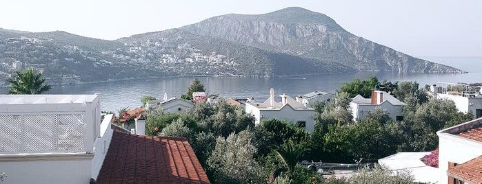 Oasis Hotel is one of Burcu'nun Beğendiği Mekanlar.
