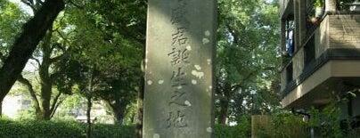 西郷隆盛生誕地 is one of 西郷どんゆかりのスポット.