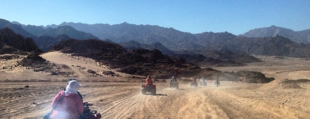Sinai Desert Buggy Safari is one of Alina 님이 좋아한 장소.