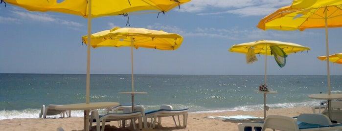 Riviera beach is one of Tempat yang Disukai George.