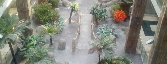 Hotel Holiday World Polynesia is one of Pueblos y Naturaleza.