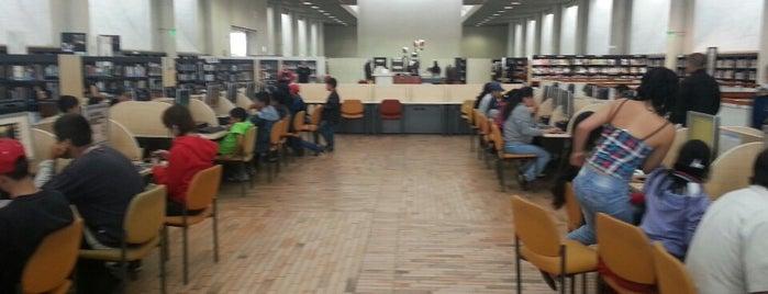 Biblioteca Pública El Tintal Manuel Zapata Olivella is one of Lieux qui ont plu à Santiago.