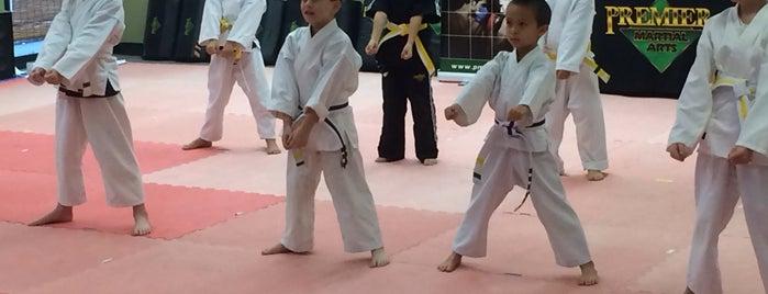 Premier Martial Arts is one of Brianna 님이 좋아한 장소.
