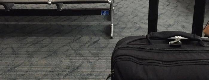Detroit Metropolitan Wayne County Airport (DTW) is one of Tempat yang Disukai Devonta.