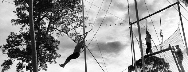 Flying Trapeze Adventures is one of Posti che sono piaciuti a Maria Relea.