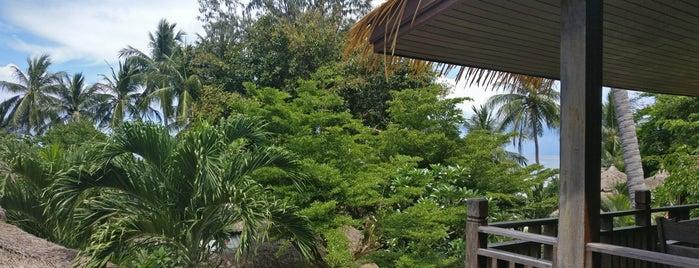 Palm Leaf Resort is one of Ko Tao.