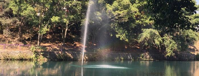 Parque Ecológico Chapultepec is one of Tempat yang Disukai Edwulf.