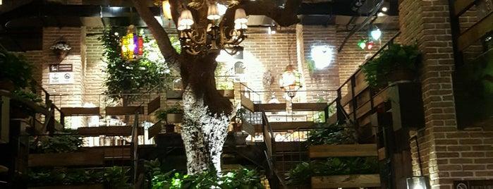 caffe bene | zhonglou is one of Posti salvati di FWB.