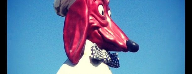 Doggie Diner Head is one of Outdoor Adventures.