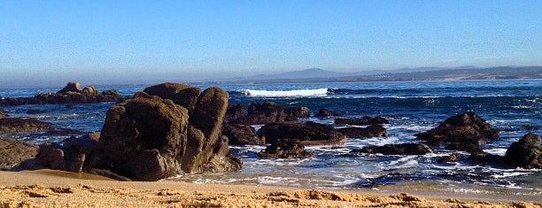 McAbee Beach is one of Monterey.