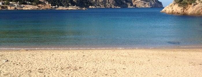 Playa de Aiguablava is one of Playas de España: Cataluña.