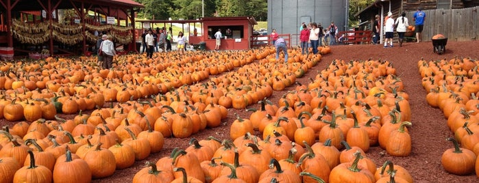 Burt's Pumpkin Farm is one of Atlanta.