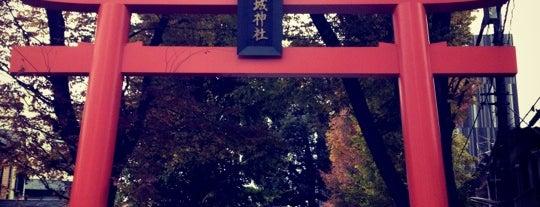 赤城神社 is one of 東京散策♪.