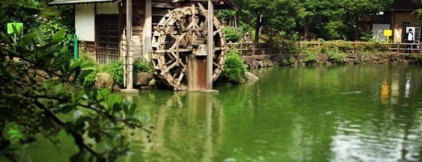 Nabeshima Shoto Park is one of Japan To Try.