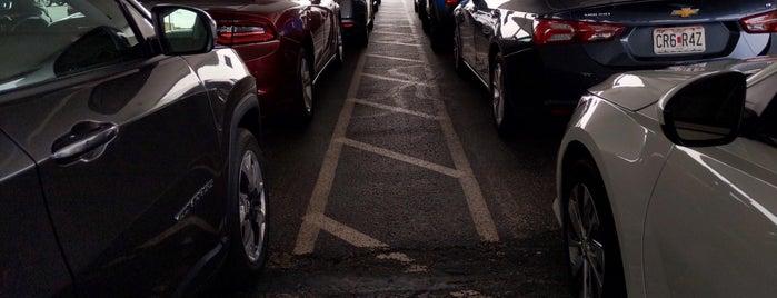 Alamo Rent A Car is one of Harv'ın Beğendiği Mekanlar.