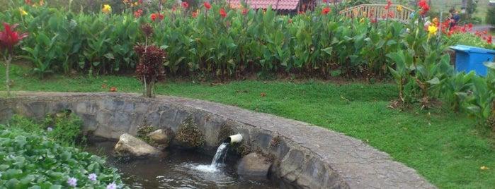 Rancho Del Sapito is one of Lugares favoritos de Karla.