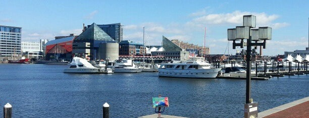 Inner Harbor is one of Outdoor To-Dos in Southeastern PA, NJ & DE..