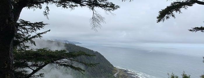 Cape Perpetua is one of Oregon Coast.