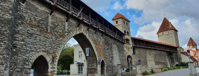 Nunnatorn is one of Tallinn.