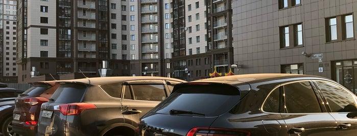 ЖК «Московские Ворота» is one of Елена : понравившиеся места.