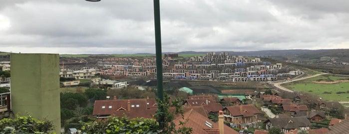 Kanatçı Dayı is one of Istanbulamaz.