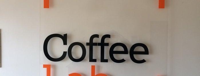CoffeeLab/Cafeterra is one of ʕ •ᴥ•ʔ II.