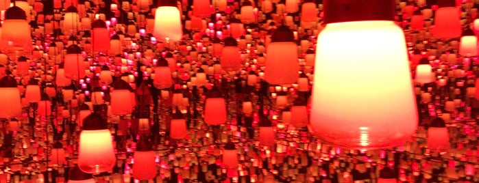 teamLab Borderless is one of Tokyo museums and museum tours.