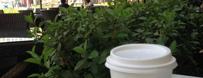 Starbucks is one of UAE: Dining & Coffee.