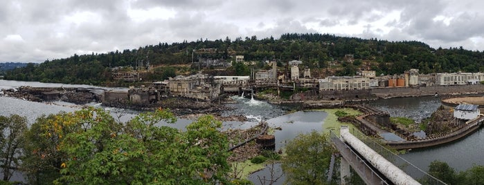 Willamette Falls is one of Lugares favoritos de Susan.